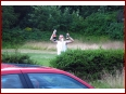 1. NissanHarzTreffen - Bild 5/341